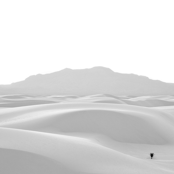White Sands, NM - Surf Collective NYC